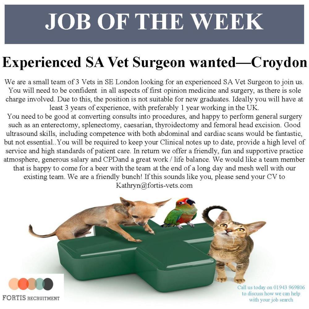 Croydon job of the week