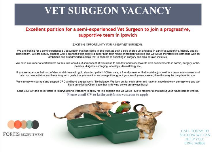 Vet Surgeon Vacancy - Ipswich