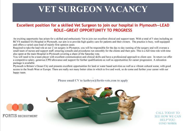 Lead vet surgeon position - Plymouth.jpg