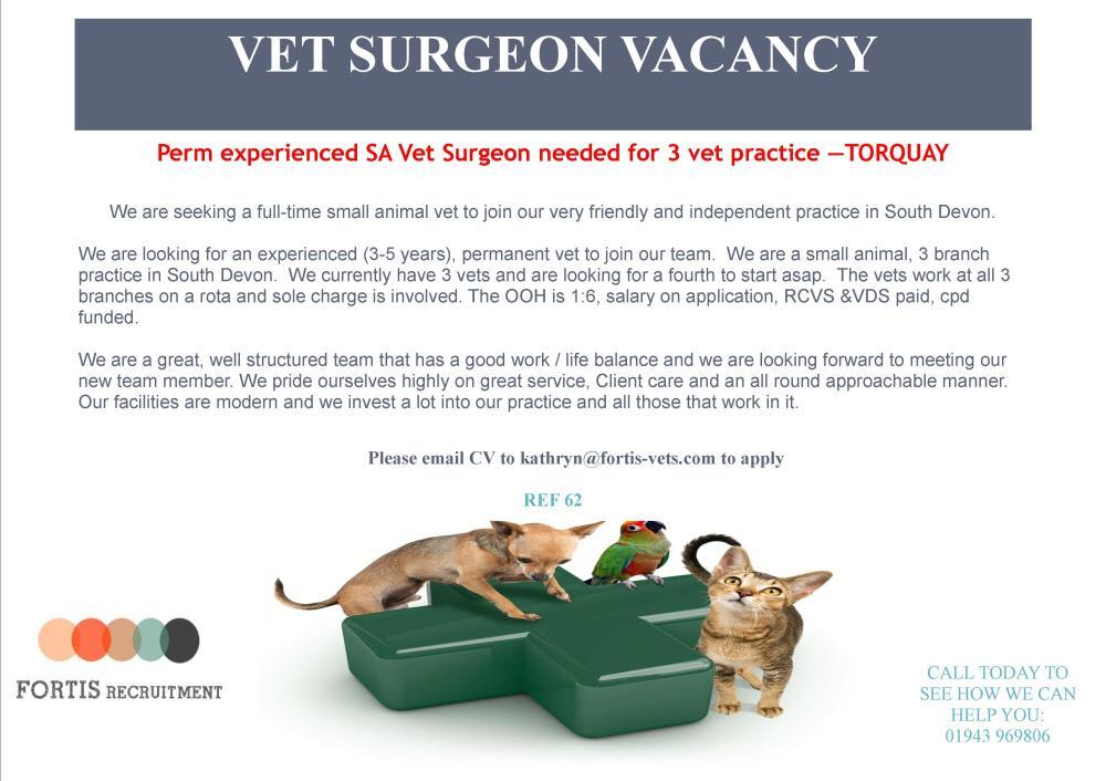 experienced sa vet surgeon wanted in Torquay.jpg