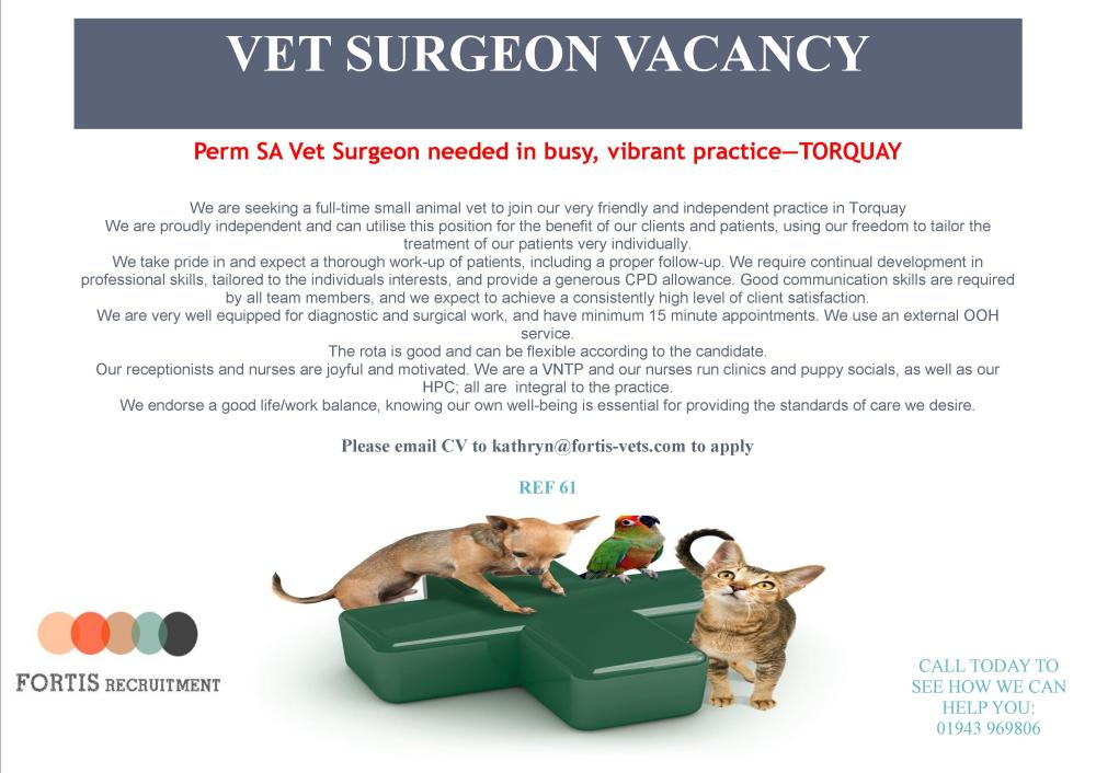 PERM SA VET SURGEON WANTED FOR VIBRANT, BUSY PRACTICE IN TORQUAY.jpg