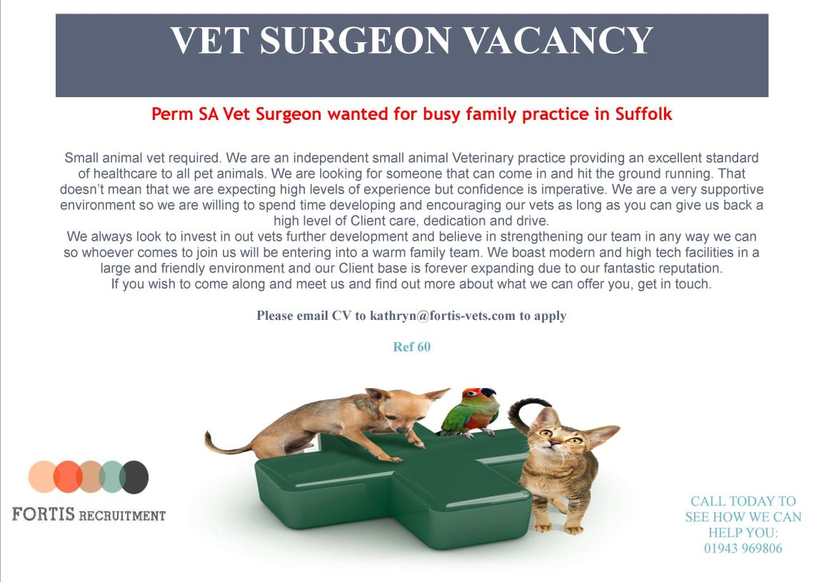 PERM VET WANTED FOR FAMILY PRACTICE IN SUFFOLK.jpg