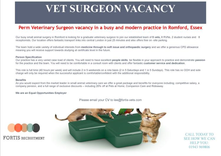 Perm Veterinary Surgeon vacancy in a busy and modern practice in Romford, Essex.jpg