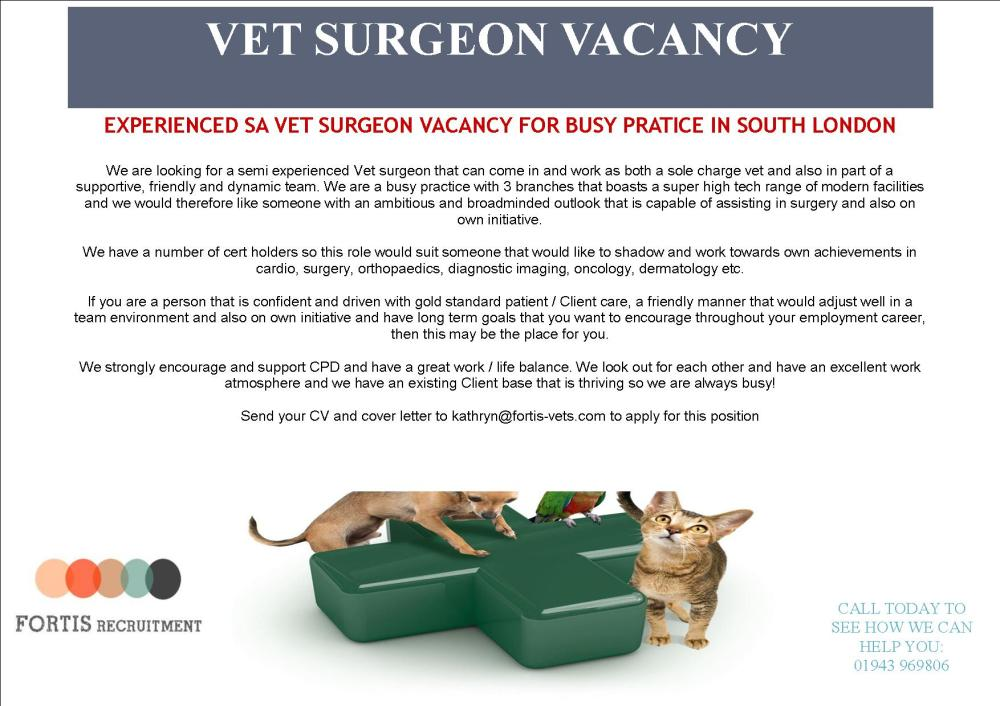 experienced-sa-vet-surgeon-vacancy-for-busy-pratice-in-south-london