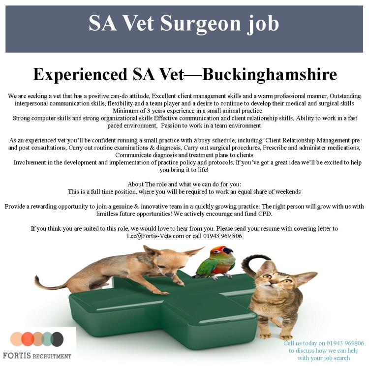 experienced-vet-buckinghamshire