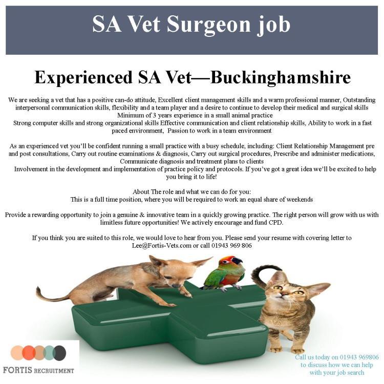 experienced-vet-buckinghamshire