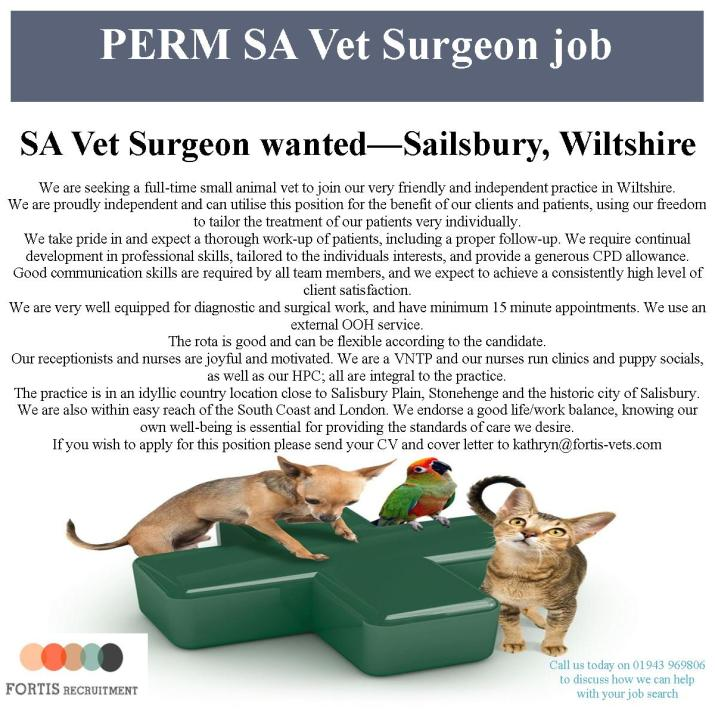 perm-sa-vet-surgeon-job-salisbury