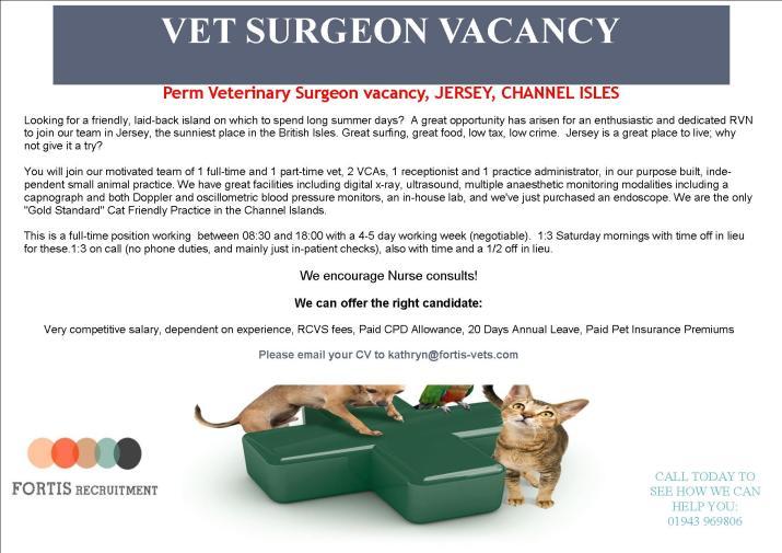 perm-veterinary-surgeon-vacancy-jersey-channel-isles