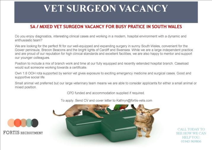 SA  MIXED VET SURGEON VACANCY FOR BUSY PRATICE IN SOUTH WALES.jpg