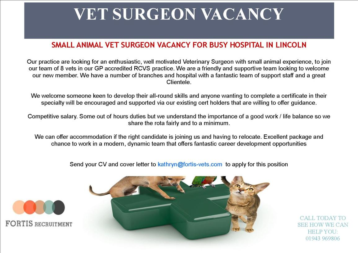 SMALL ANIMAL VET SURGEON VACANCY FOR BUSY HOSPITAL IN LINCOLN.jpg