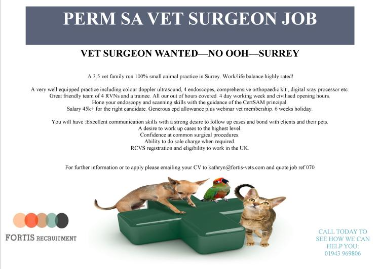 vet-surgeon-wanted-no-ooh-surrey