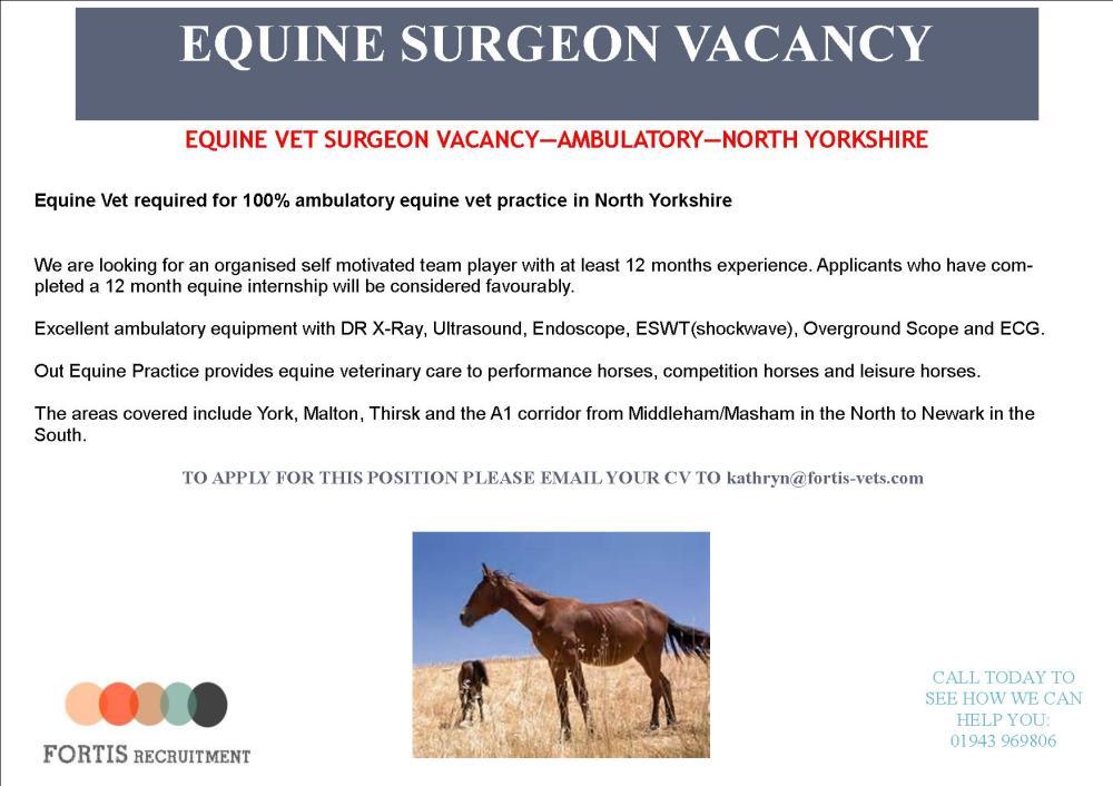 equine-vet-surgeon-ambulatory-north-yorkshire