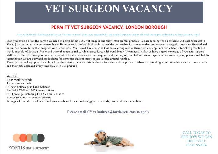 perm-ft-vet-surgeon-vacancy-london-borough