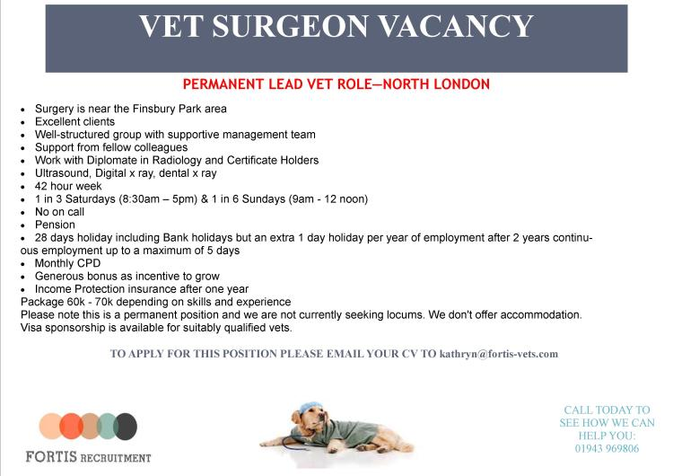 permanent-lead-vet-role-north-london