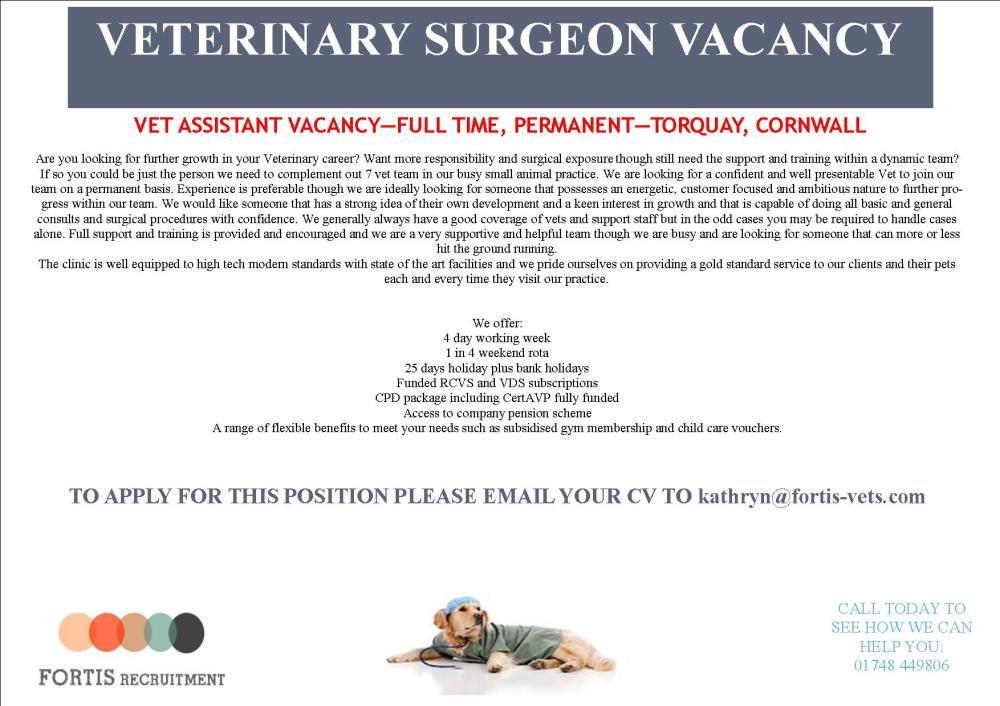 vet-assistant-vacancy-full-time-permanent-torquay-cornwall
