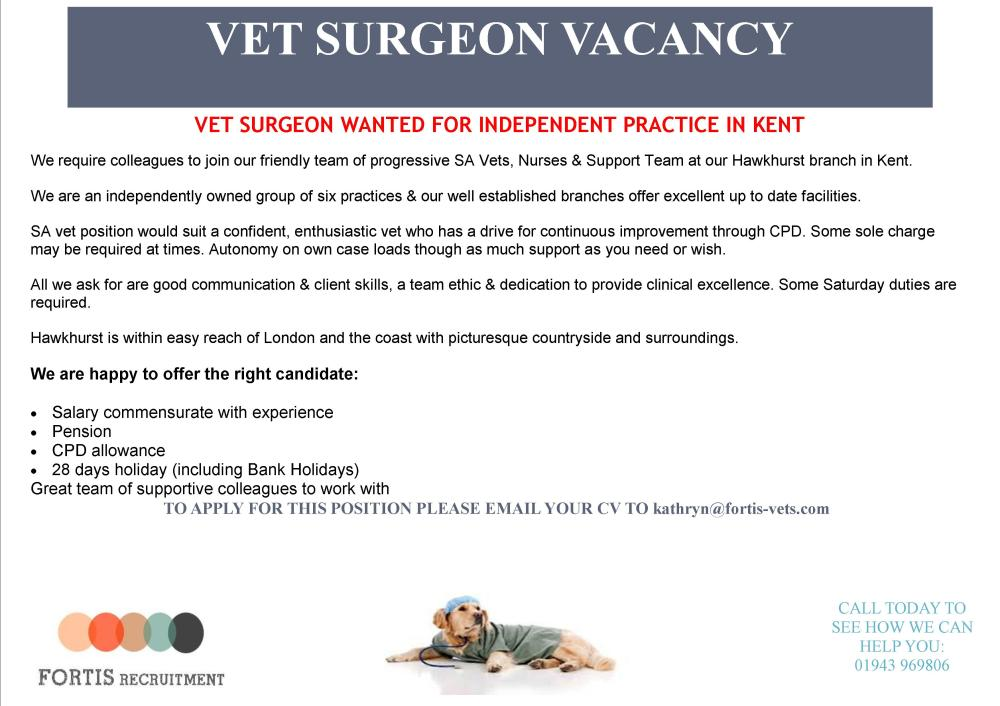 vet-surgeon-wanted-for-independent-practice-in-kent