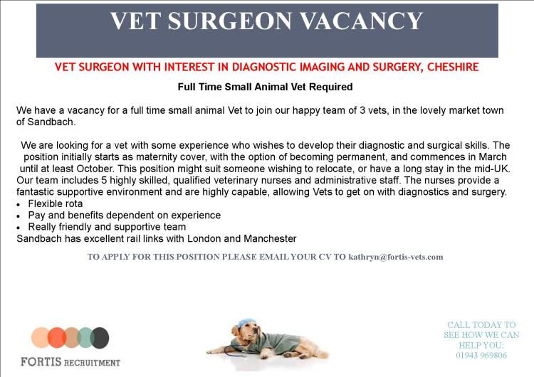 vet-surgeon-with-interest-in-diagnostic-imaging-and-surgery-cheshire