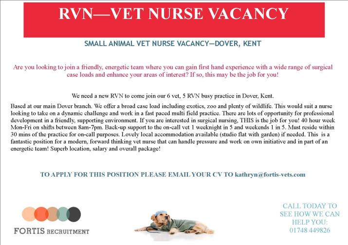 SMALL ANIMAL VET NURSE VACANCY—DOVER, KENT