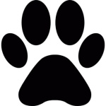 animal-paw-print-shape_318-30445