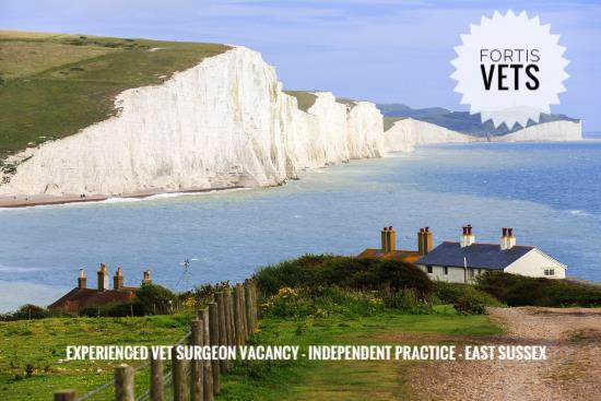 Experienced vet surgeon vacancy -independent practice – EastSussex