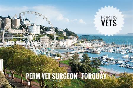 Perm vet surgeon vacancy –Torquay