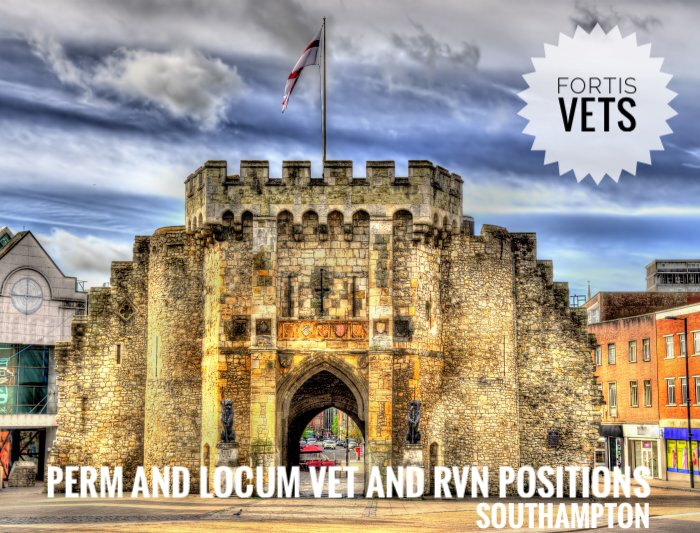 Perm and locum vet and RVN positions –Southampton
