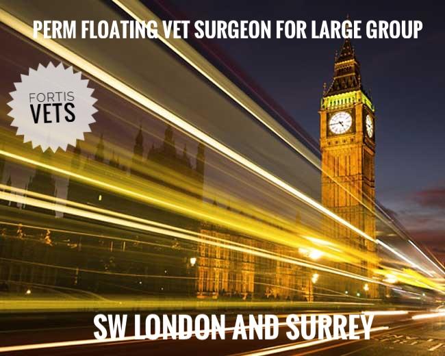 Experienced float vet surgeon vacancy – large group across SW London andSurrey